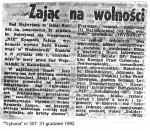 1992-12-31_Tr_Zajac_na_wolnosci-150x131 PALANTY - PUBLIKACJE PRASOWE