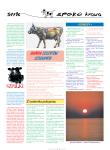 2003_Swieta_Krowa_09_16-110x150 Święta Krowa